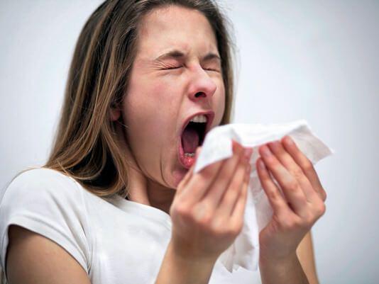 аллергия лето 2017 главный аллерголог врач