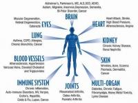Ученые предупреждают: остерегайтесь приема антиоксидантов!