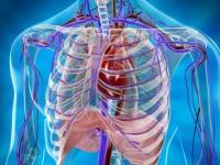 Емфізема легень: лікування та методи діагностики захворювання